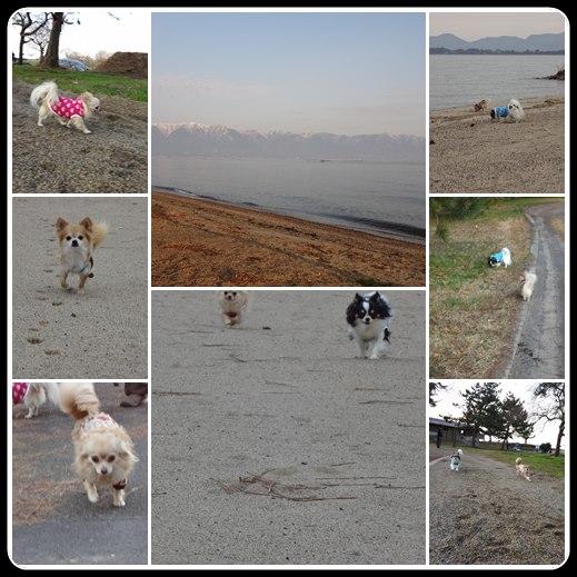 20120303-5.jpg