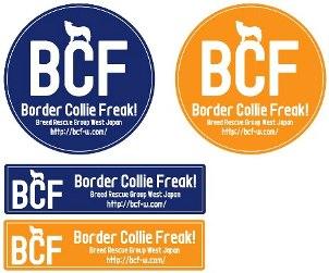 BCF sti