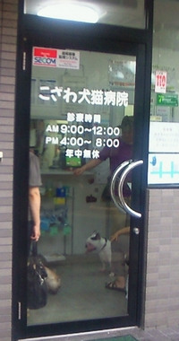 動物病院3