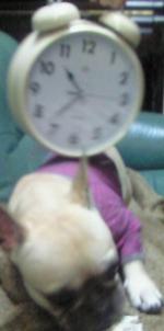 小鉄と時計2