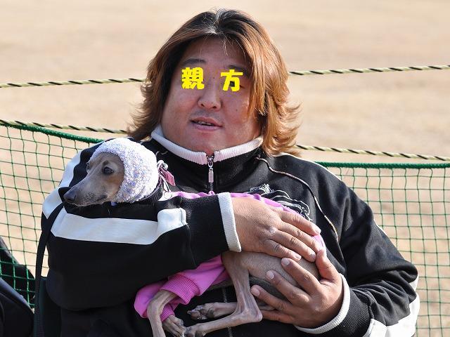 10-1-31 足柄イタグレ 525