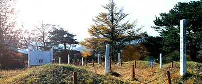 photo2-1_r1_c1.jpg