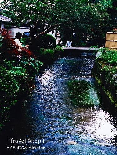 YASHICA_200907_04.jpg