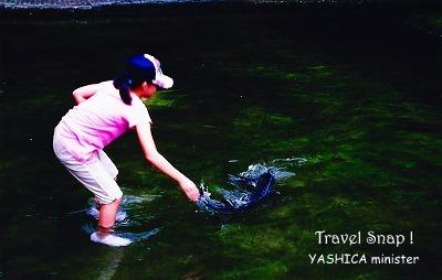 YASHICA_200907__5.jpg