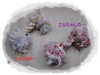 IMG_0046_S_convert_20090328224007.jpg