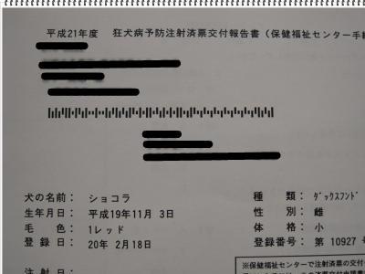 snap_1103syokora_200946122343.jpg