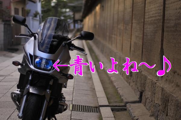 12IMG_2581.jpg
