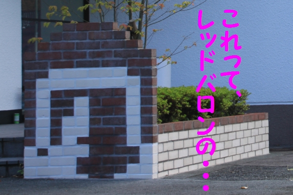 RDIMG_0743