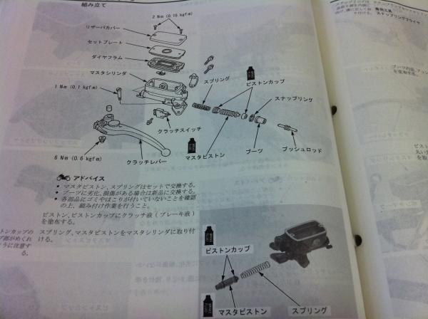 8doniti06.jpg
