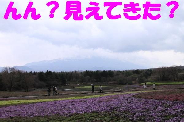 fuji37.jpg