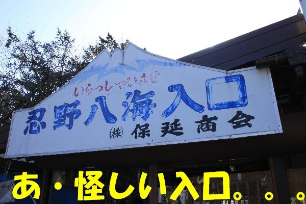 fuji81.jpg