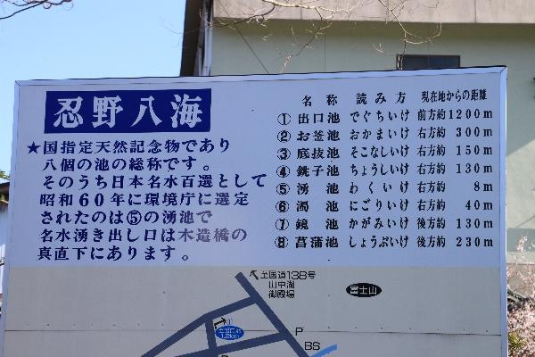 fuji82.jpg