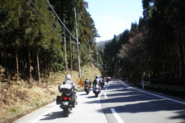 gifusakura7.jpg
