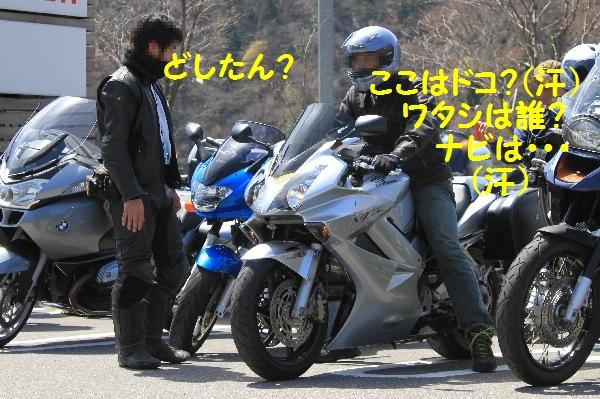 gifusakura9.jpg