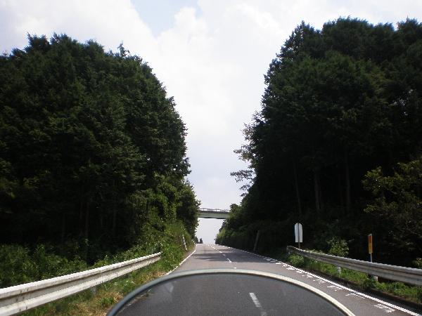 heijitukawa-4.jpg