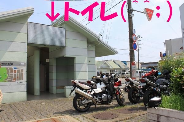 katuuramaguro-4k.jpg