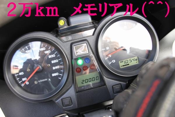memotu-2.jpg