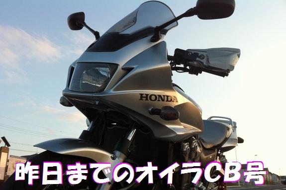 mentD12.jpg