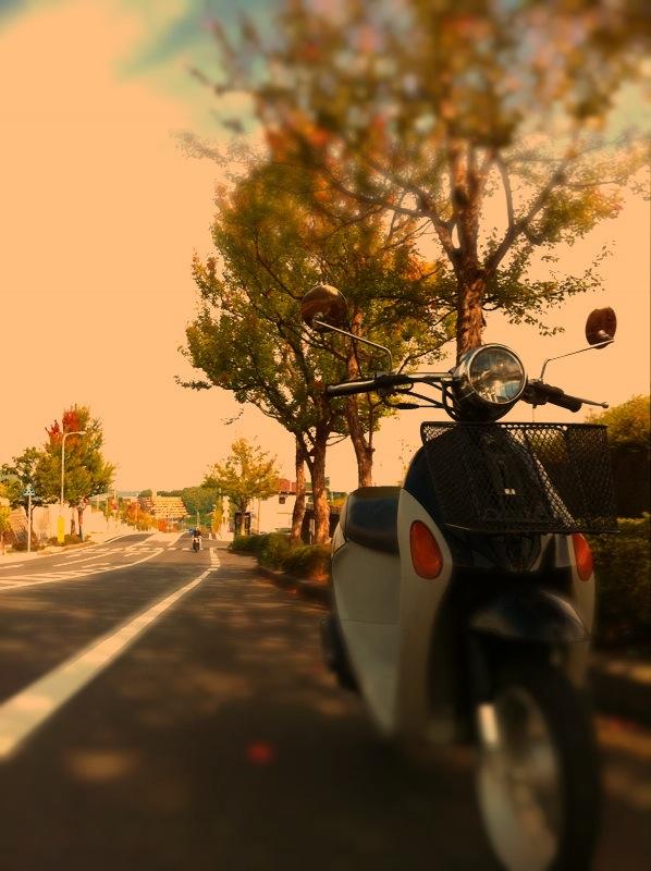yomesuku75.jpg