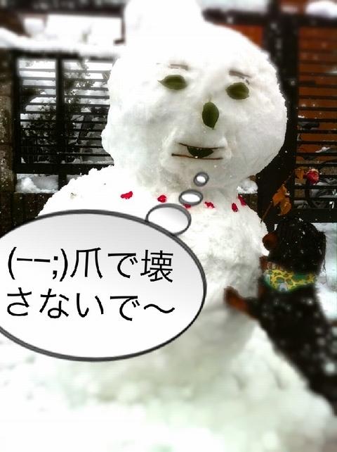 yukinko-7t.jpg