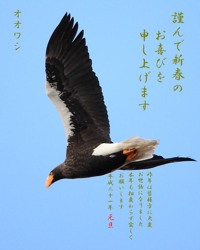 2008年賀2