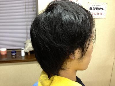 003_convert_20111126135413.jpg