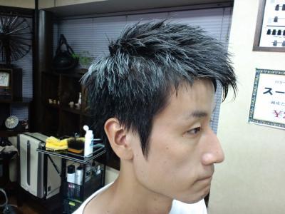 CA3C0496_convert_20110811125526.jpg