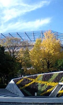 横綱公園1