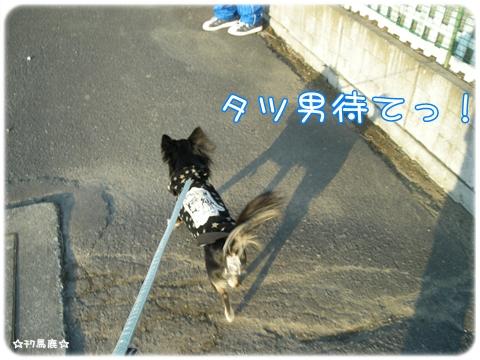 4月散歩4