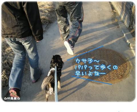 4月散歩5