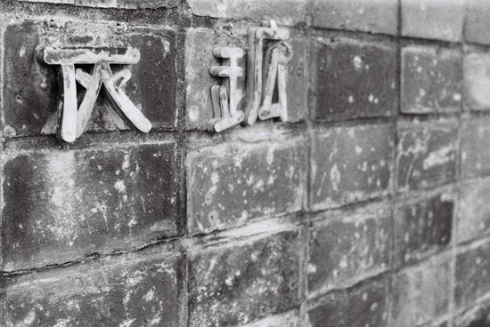 1005horohoro_24.jpg