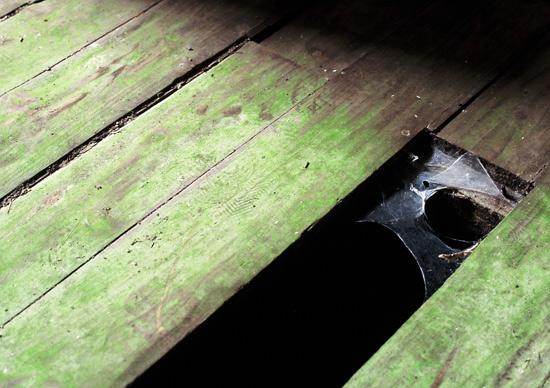 200909koku_31.jpg
