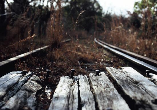 201003np_2.jpg