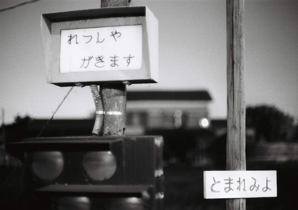 amaariki_5.jpg