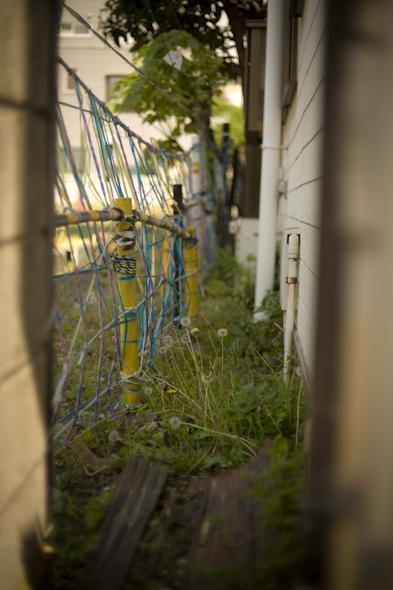 bakushinchi201105_031.jpg