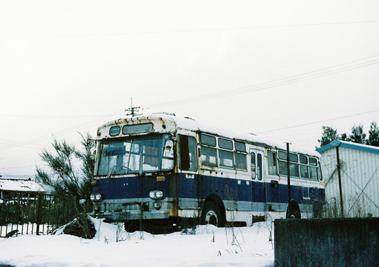 haiba2010.jpg