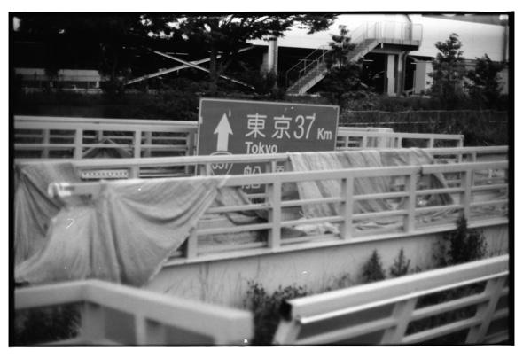 haihodokyo2010_1.jpg