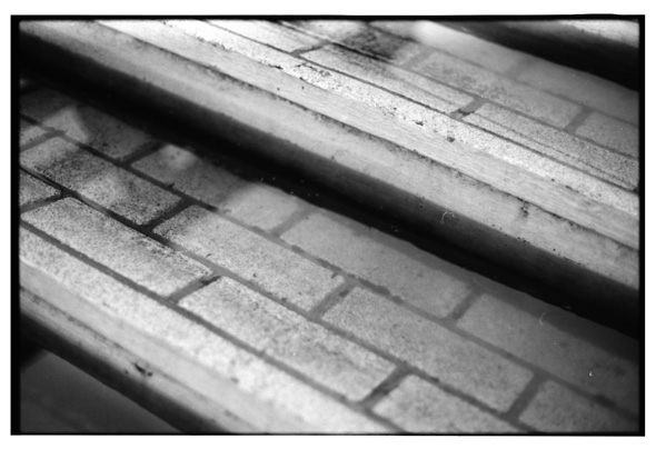 haihodokyo2010_15.jpg