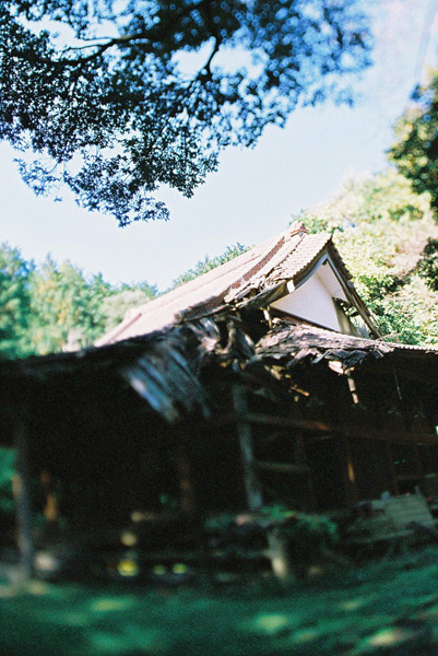 haiji2.jpg
