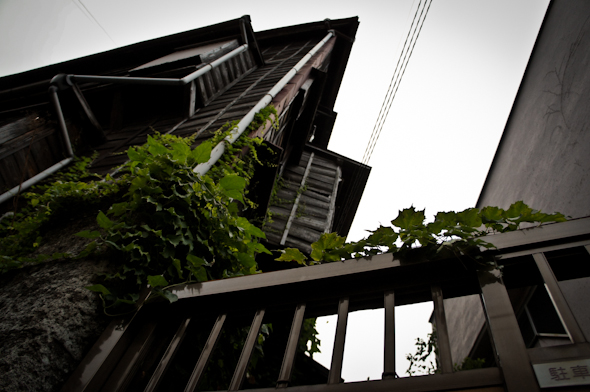 hongou20110801_1-13.jpg