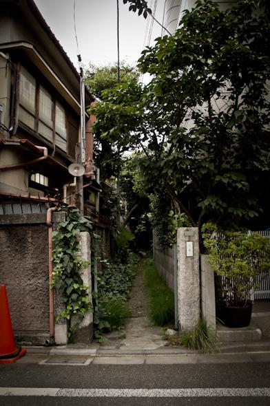 hongou20110801_1-2.jpg