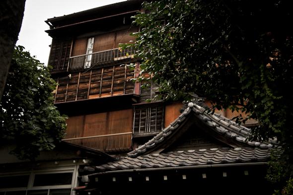 hongou20110801_1-7.jpg