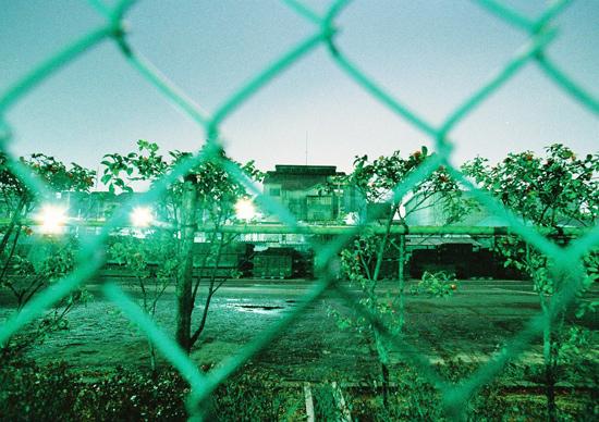 nanimo2009_8.jpg