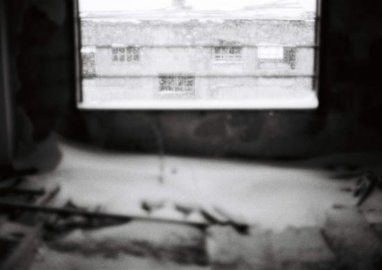 sirokuma2009_9.jpg