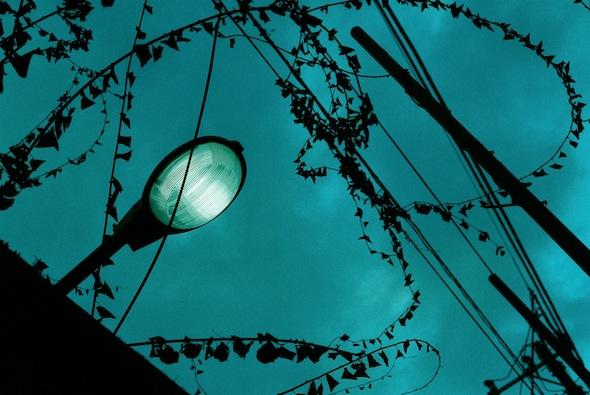 tnst_2010_9.jpg