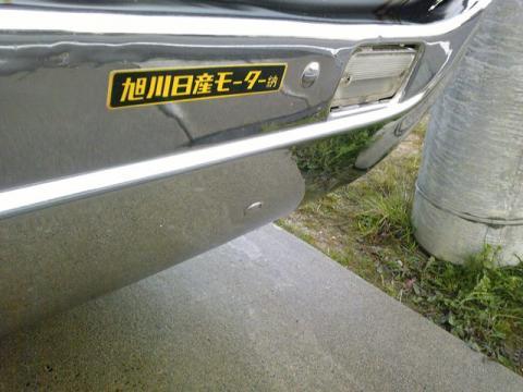 Image331.jpg