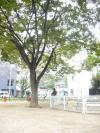 038_convert_20081016225422.jpg