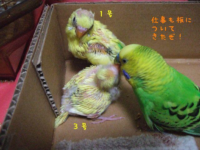 2006_0228_0212.jpg