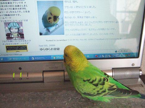 2006_1108_0045.jpg