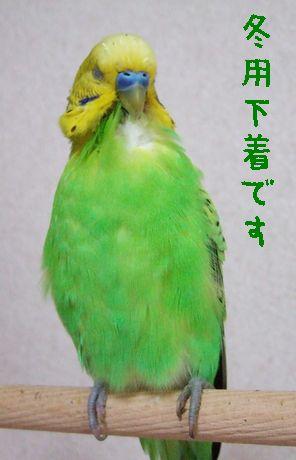 2006_1120_0087.jpg